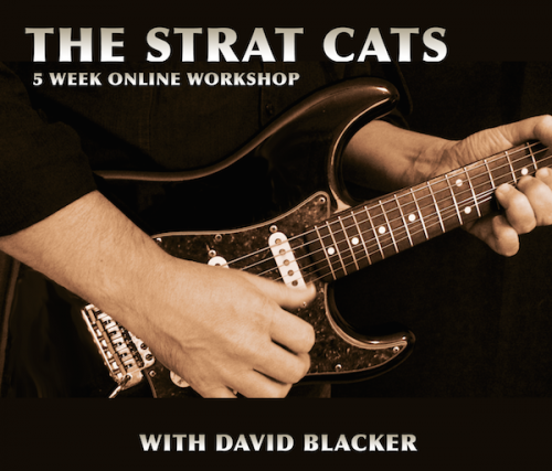 stratcats-large